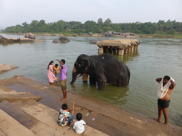 Elephant bath time in Hampi