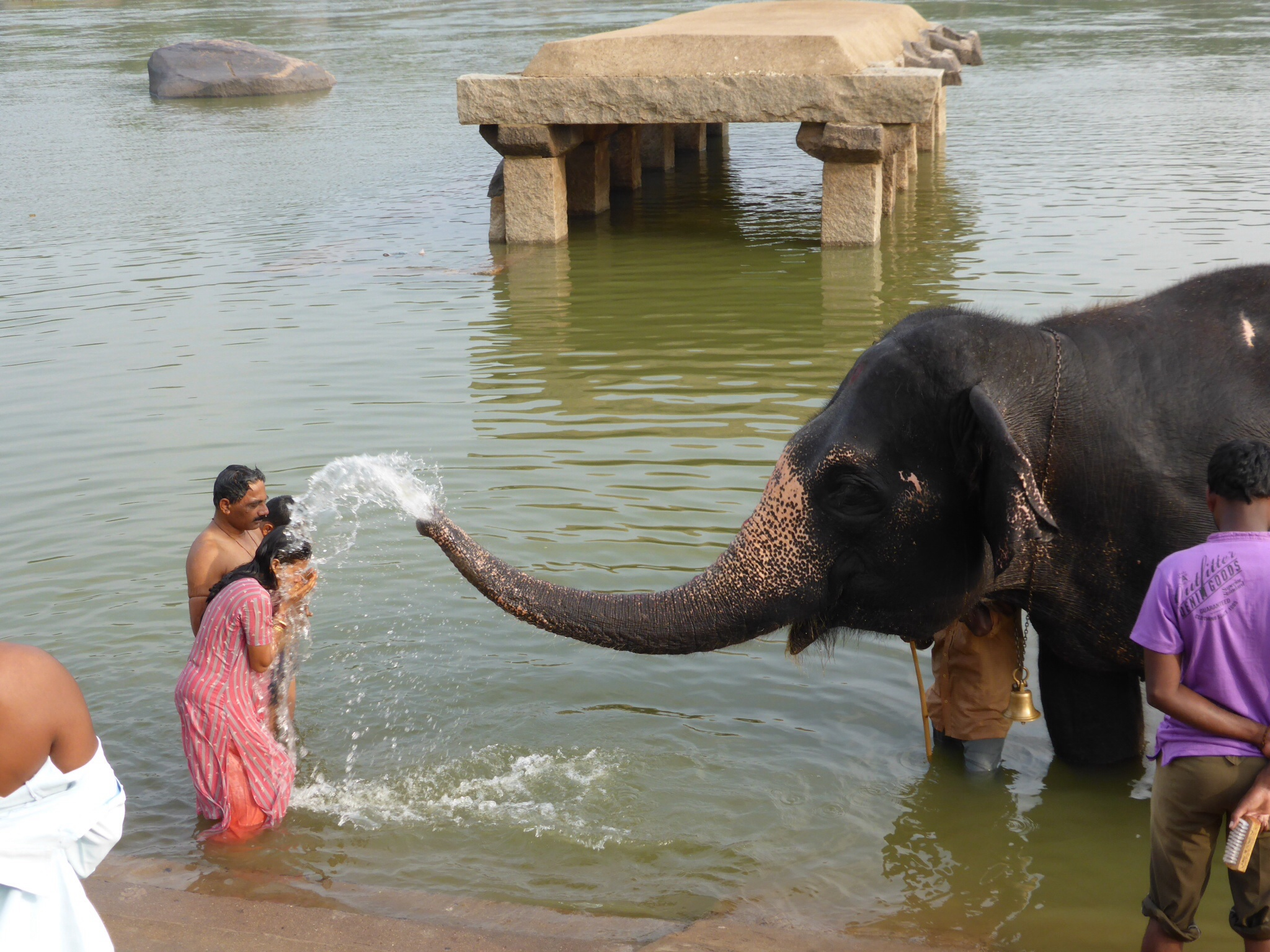 Elephant Bath Time In Hampi India Tired Of London
