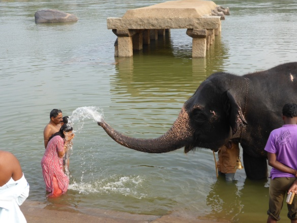 Elephant shower in Hampi